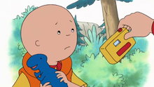 Caillou: Outdoor Adventures (Caillou's Fun Outside!)
